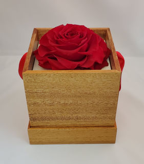 Picture of Appreciation Deluxe Rose Gift Box